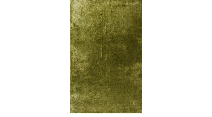 Soren Green 5 X 7 Indoor Outdoor Rug