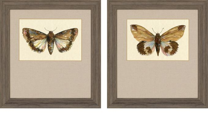 Branstetter Brown Set of 2 Artwork - Casual