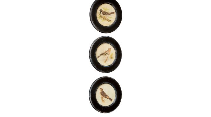 Wrens Black Set of 3 Artwork - Traditional