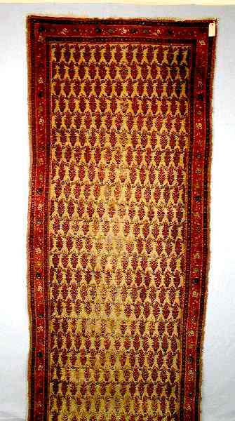 Saraband runner, northwest Persia, late 19th century